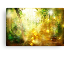 Show Me Your Glory Canvas Print