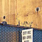 city rec by Lenore Locken