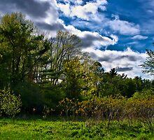 NH Spring Landscape by Edward Myers