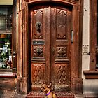 DOGGIE DOOR  by MIGHTY TEMPLE IMAGES