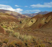 Snake Valley by Shervin  Moshiri