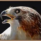 Eagle Eye by George  Link