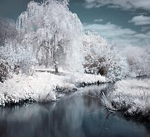 Infrared Lagoon by shutterjunkie