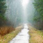 Spring and rain by Tasha1111