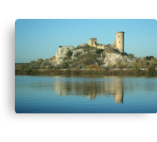 View along the Rhone: A Castle That Was Canvas Print