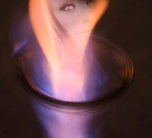 FLAME by Terra 'Sunshine' Gilbert