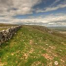 Slieve Carran Wall by John Quinn