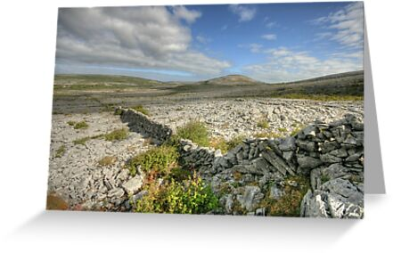 Burren National Park by John Quinn