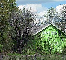 Eco-Barn by Monnie Ryan