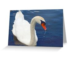 Swan glamour Greeting Card