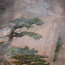 Cliff Pine Trees-No.2 by Ava McNamee