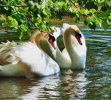 Happy Together by Susie Peek