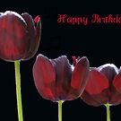 Three Tulips - Birthday Greeting Card by BlueMoonRose