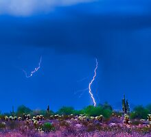 Colorful Desert Storm by Bo Insogna