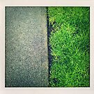 The Grass is Always Greener by RobertCharles