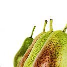 Pears by Susanne Correa