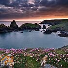 Cornwall - Kynance Cove by Michael Breitung