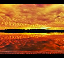 "Maroochy river  by Phineous ""Flash""   Cassidy"