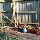 Gardening by sandycarol