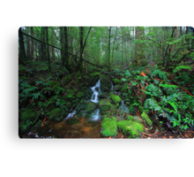 Dee River Cascade Canvas Print