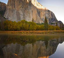 Yosemite National Park by Lawrence Yeung