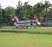 Columbia Helicopters PNG by Stretch72