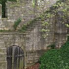 beautiful  walls of York by BronReid
