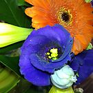 Fab Flowers Flaunting their Fantasticness by KazM