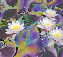 Rainbow Lotus by steppeland