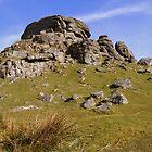 Dartmoor: Kes Tor by Rob Parsons