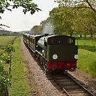 Isle of Wight Steam Railway by Hertsman