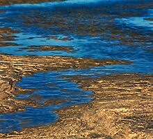 Tidal Stream by ezindo