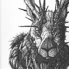 Jackalope by Terry  Waldher