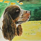 Charlie The Springer! by Mike Paget