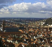 View from the Heidelberg Castle by fototaker