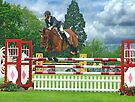 Showjumping - Guildford County Show - 2009 by Colin J Williams Photography
