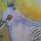 Top Knot Pidgeon - Watercolour by Kay Cunningham
