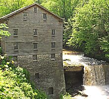 Lanterman's Mill in Spring by Monnie Ryan