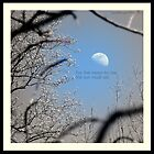 New York Moon Rise by Layla Morgan Wilde
