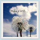 Make a Wish by Layla Morgan Wilde