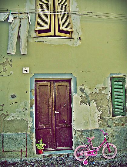 Little Pink Bicycle by Mojca Savicki