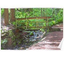 Wooden Bridge Over Mountain Stream Poster