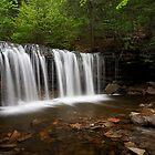 Oneida Falls by Tim Devine