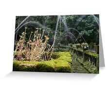 Flower Box and Water Fountain - Paronella Park Greeting Card