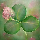 Clover-St.Patrick-Trinity by JeffeeArt4u