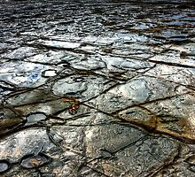 Rock Patterns by Cecily McCarthy