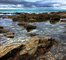 Tidal Pool by Cecily McCarthy