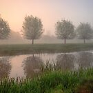 Mist on the Stour by AntonyB