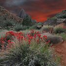 Trail to the Watchman by rmanruss