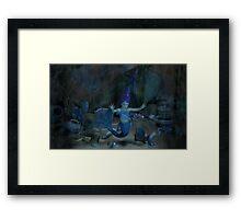 Captured Baby Mermaid  Framed Print
